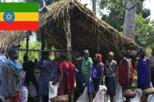 コーヒー発祥の地エチオピア