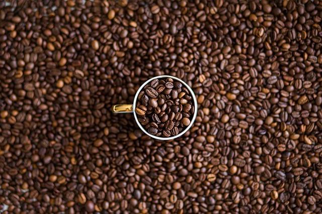 スペシャルティコーヒーの基準